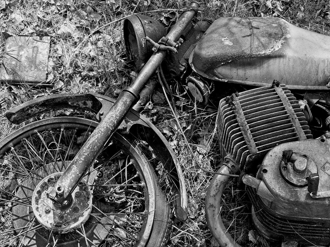 Autofriedutofriedhof-Falkenberg-copy-8