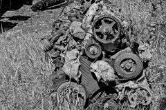 Autofriedutofriedhof-Falkenberg-copy-12